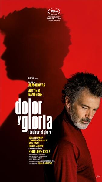 痛苦与荣耀 Dolor y gloria (2019)