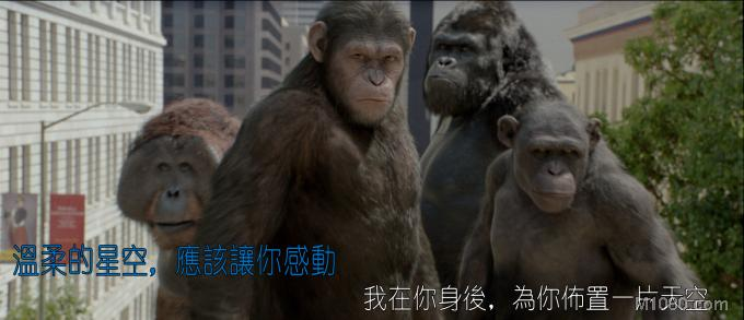 3D猿族崛起(Rise of the Planet of the Apes)3