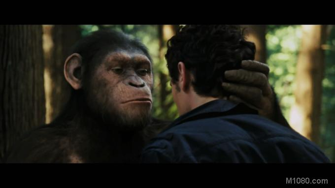 3D猿族崛起(Rise of the Planet of the Apes)1