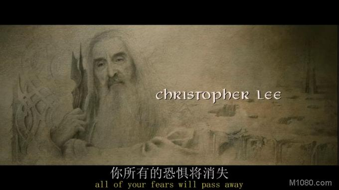 指环王3:王者无敌(The Lord of the Rings: The Return of the King)13
