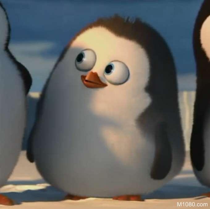 查找好友企鹅头像