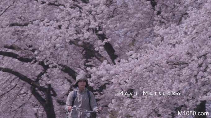 小森林 冬春篇 (little forest winter spring)图片